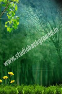 Download Free studio Psd Background for Photoshop